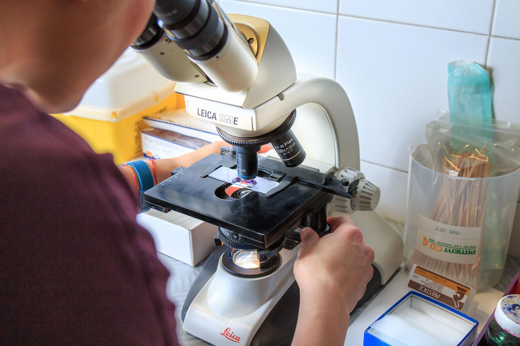laboratorio analisi veterinarie busto arsizio