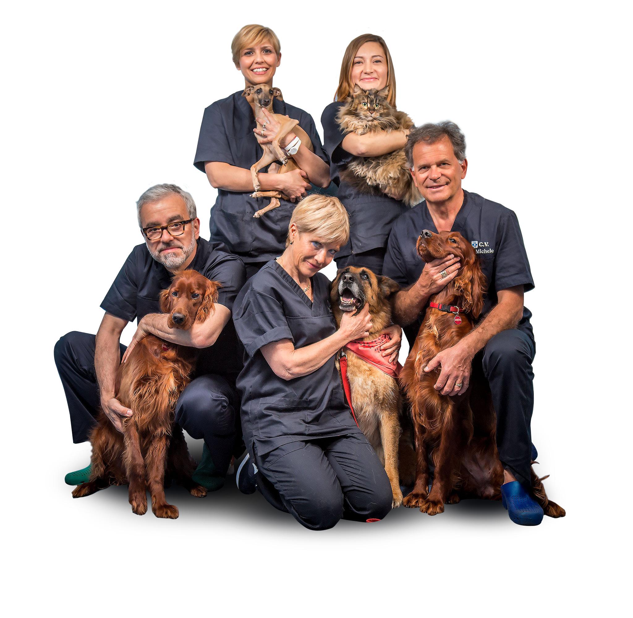 Soci veterinari Busto Arsizio